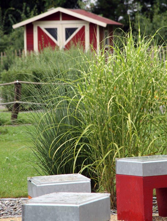 Pequeño jardín con la hierba perenne imagen de archivo
