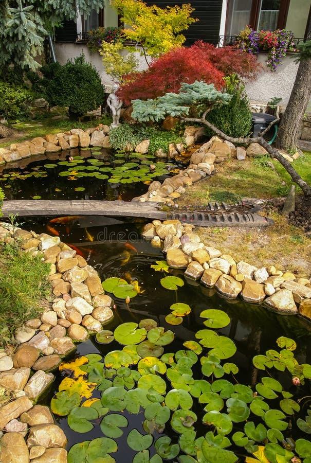 Pequeño jardín pintoresco con una charca, los lirios de agua y las piedras fotografía de archivo