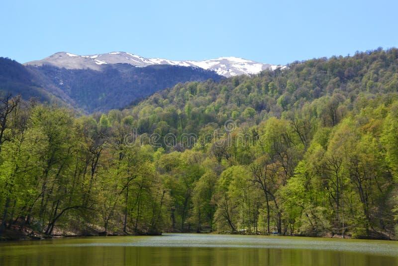 Pequeño lago en Dilijan, Armenia foto de archivo