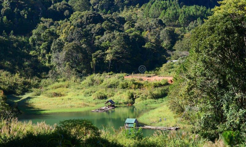 Pequeño lago en el bosque imagenes de archivo