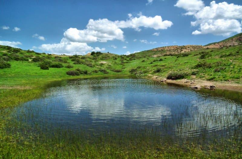 Pequeño lago en prado foto de archivo libre de regalías