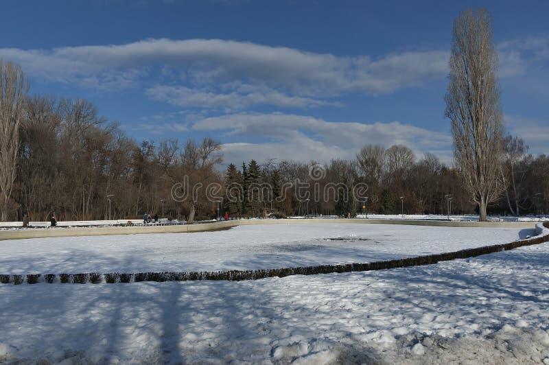 Pequeño lago winter en el parque del sur hermoso imagenes de archivo