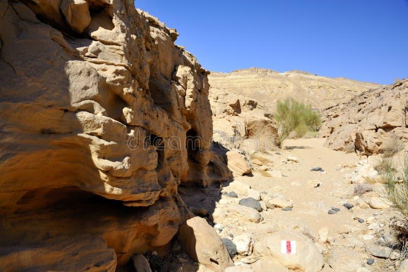 Pequeño lecho de un río seco en desierto del Néguev. imagenes de archivo