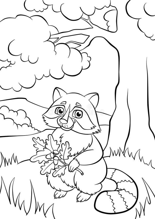Pequeño mapache lindo bueno en el bosque stock de ilustración