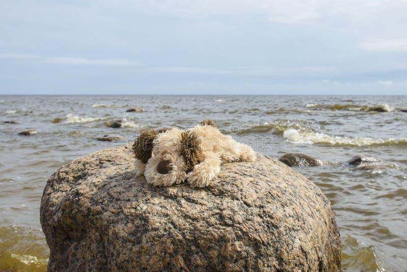 Pequeño marrón lindo con los juguetes blancos de la felpa del perrito de la felpa que se sientan en una piedra grande del granito imagen de archivo libre de regalías