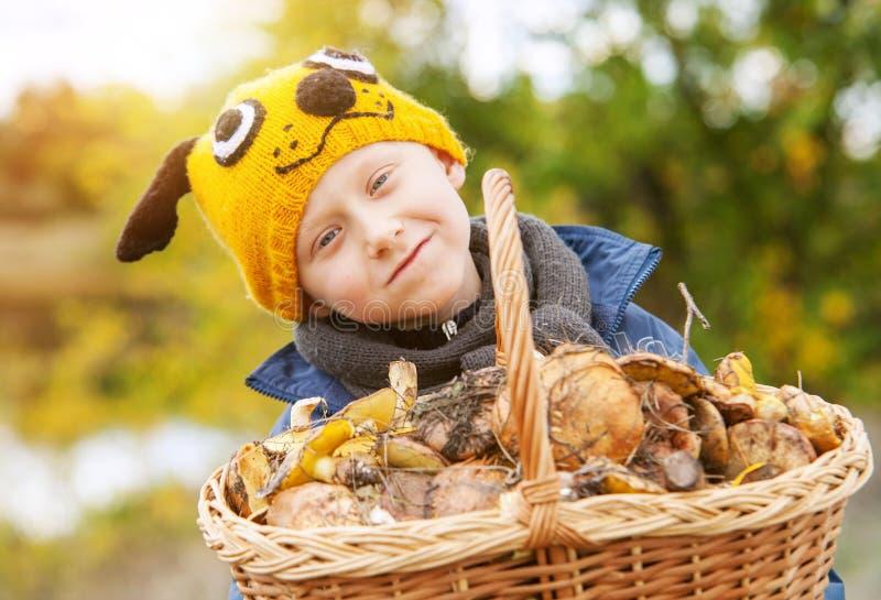 Pequeño muchacho bonito en sombrero divertido con la cesta grande de setas foto de archivo libre de regalías