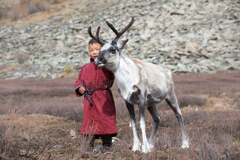 Pequeño muchacho tsaatan que juega con su reno del ` s de la familia imagen de archivo