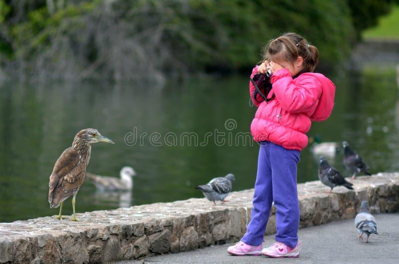 Pequeño niño con una cámara que fotografía fauna imagen de archivo libre de regalías