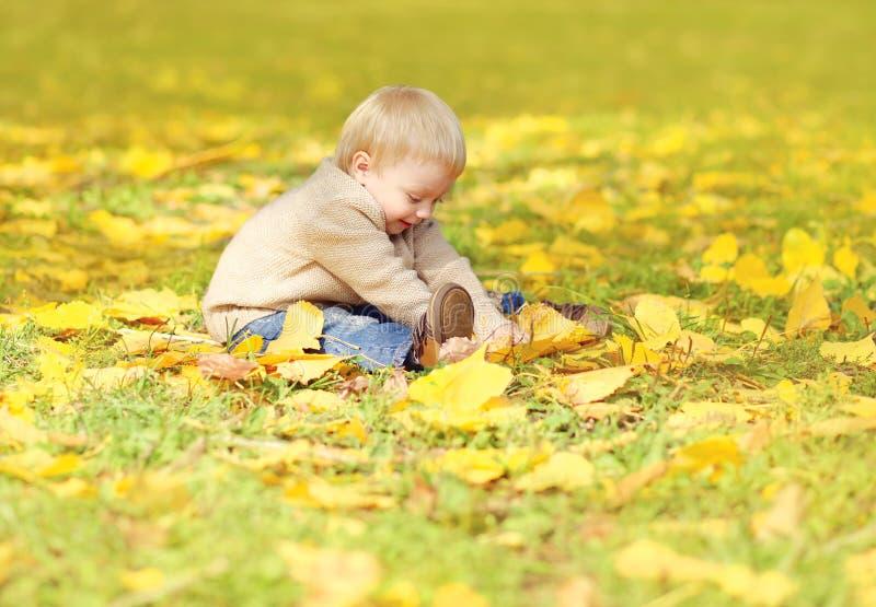 Pequeño niño lindo feliz que se sienta en hierba y que juega con las hojas amarillas en otoño fotos de archivo libres de regalías