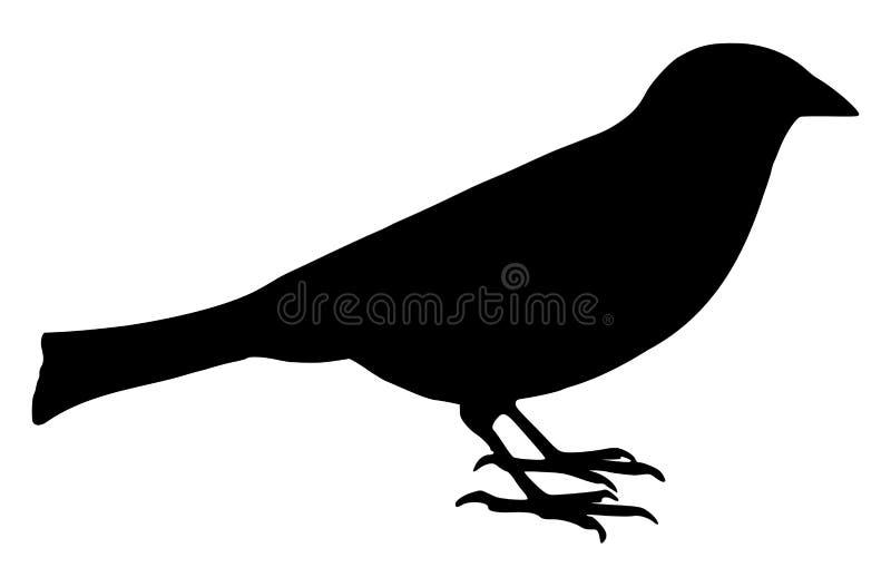 Pequeño pájaro ilustración del vector