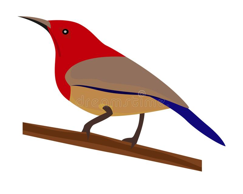 Pequeño pájaro libre illustration