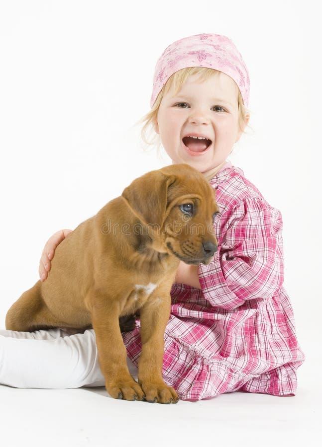 Pequeño perrito sonriente adorable y feliz de la muchacha fotos de archivo