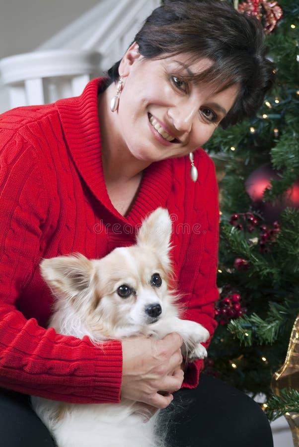 Pequeño perro dulce fotografía de archivo