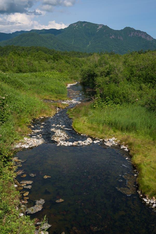 Pequeño río con las rocas en alguna parte en Kamchatka imagen de archivo