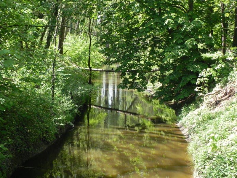 Pequeño río en Alemania foto de archivo