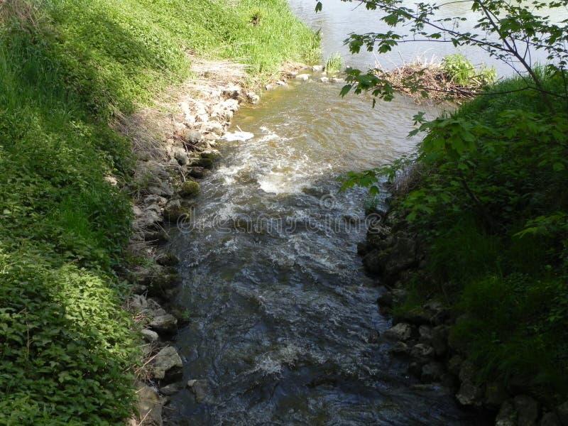 Pequeño río en germany-2 fotografía de archivo libre de regalías