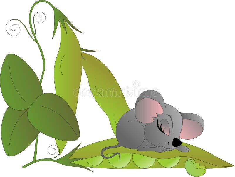 Pequeño ratón que duerme en la vaina de guisante ilustración del vector