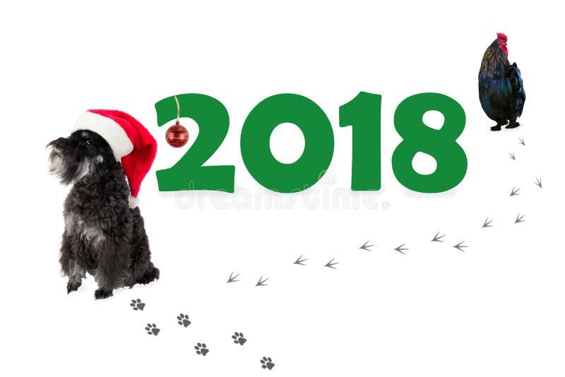Pequeño Schnauzer miniatura del perro negro en sombrero del ` s de Papá Noel como símbolo fotografía de archivo