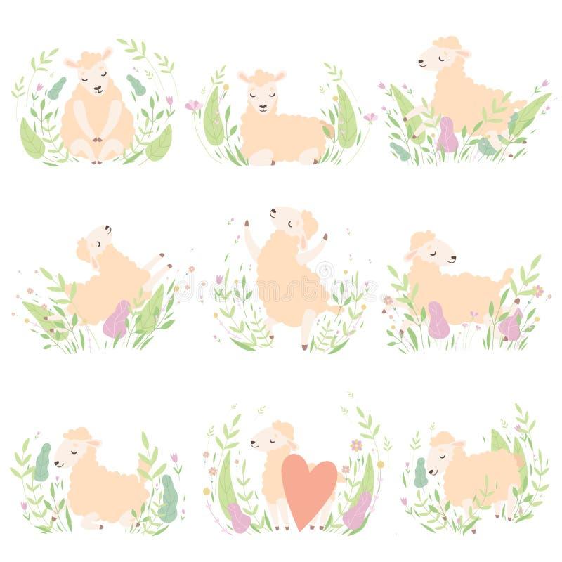 Pequeño sistema lindo de los corderos, animales adorables de las ovejas en el ejemplo del vector del prado de la primavera stock de ilustración
