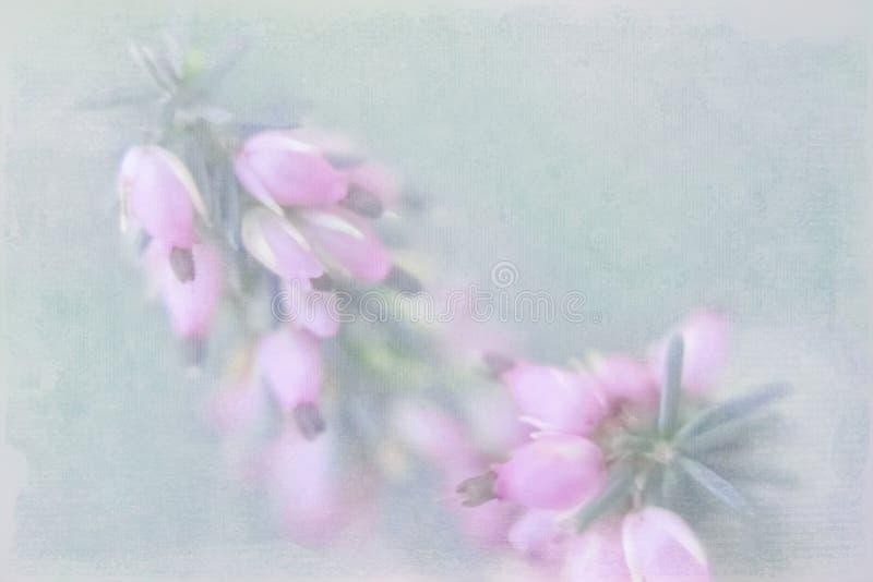 Pequeños floretes rosados en un fondo indistinto verde con el imp imagen de archivo libre de regalías