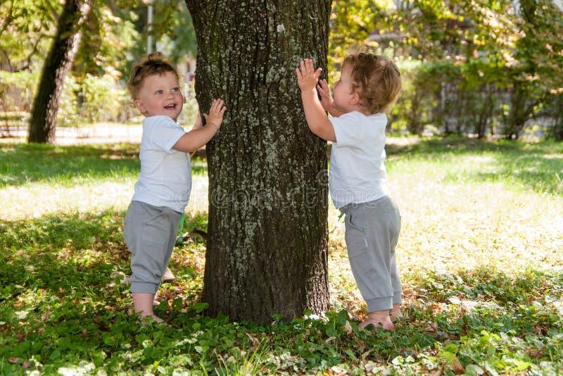Pequeños gemelos, muchachos rizados en las camisetas blancas, abrazando un árbol imagen de archivo