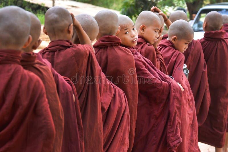 Pequeños monjes que miran la cámara imagenes de archivo