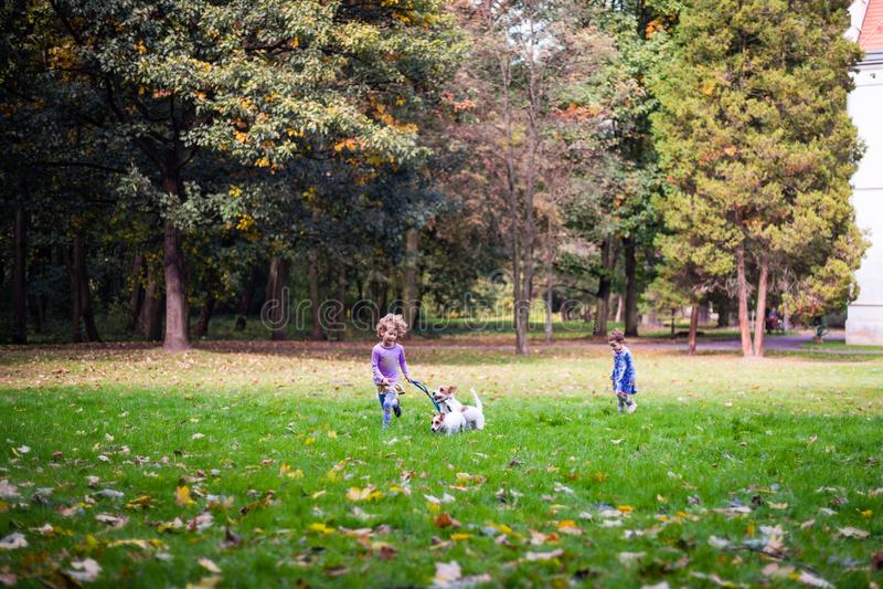 Pequeños niños caucásicos que corren alrededor del parque del otoño con los perros imagen de archivo