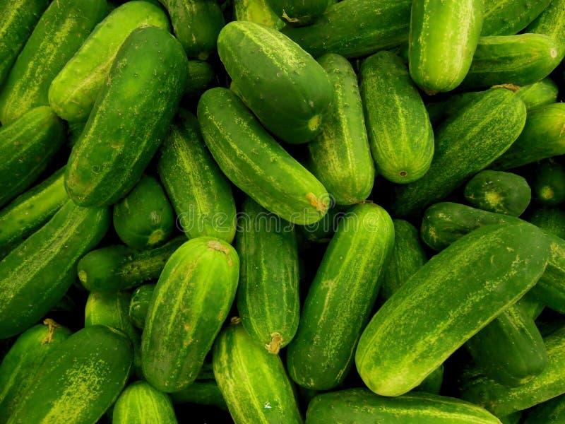 Pequeños pepinos verdes de la salmuera del mercado imagen de archivo libre de regalías