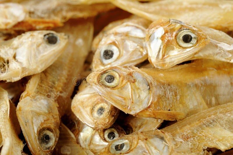 Pequeños pescados secados foto de archivo