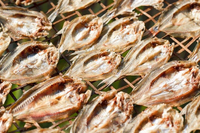 Pequeños pescados secados foto de archivo libre de regalías