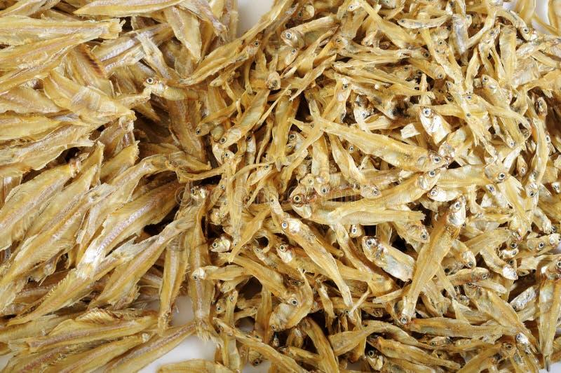 Pequeños pescados secados fotos de archivo libres de regalías