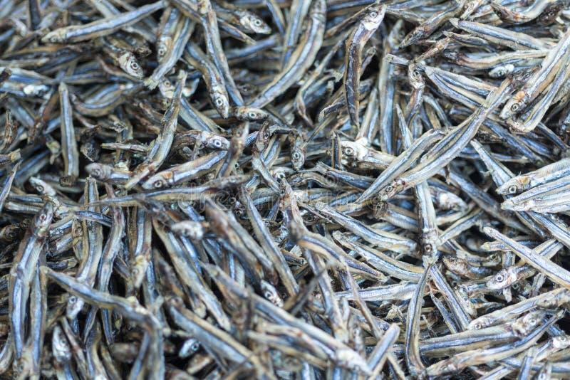 Pequeños pescados secados usados en cocina asiática foto de archivo libre de regalías