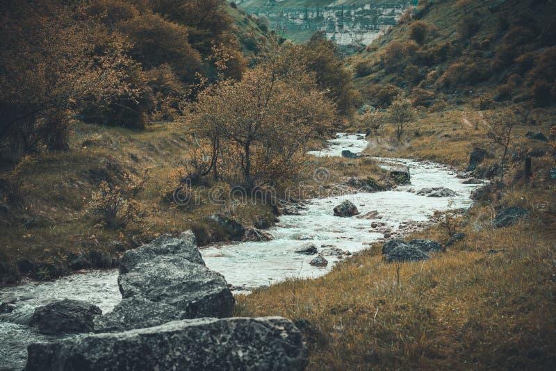 Pequeños río, piedras, hierba, árboles y arbustos de la montaña en otoño fotos de archivo