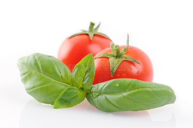 Pequeños tomates con albahaca fotografía de archivo libre de regalías