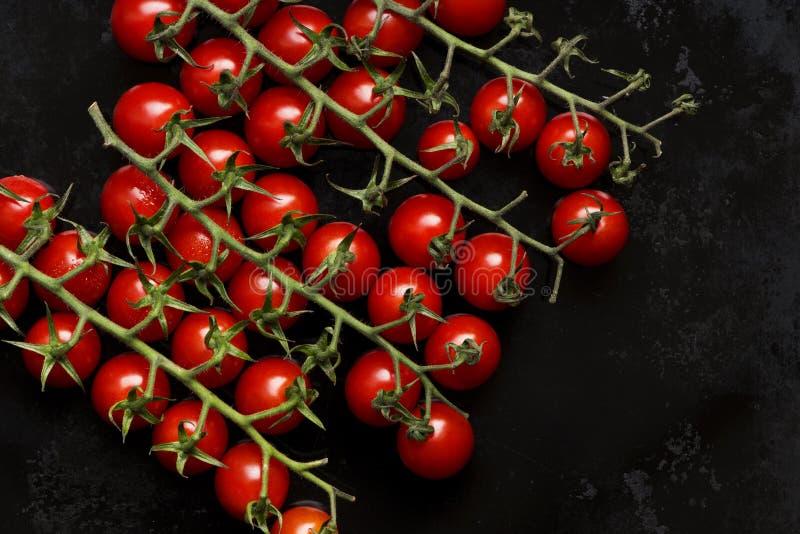 Pequeños tomates rojos fotos de archivo