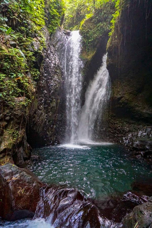 Peque?a cascada en un bosque en Bali, Indonesia con una mini cascada Conceptos del bosque, de la cala, de la cascada y del paisaj imagen de archivo