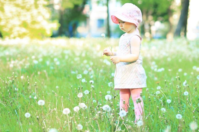 Peque?a muchacha linda que camina en un parque del verano imagen de archivo libre de regalías