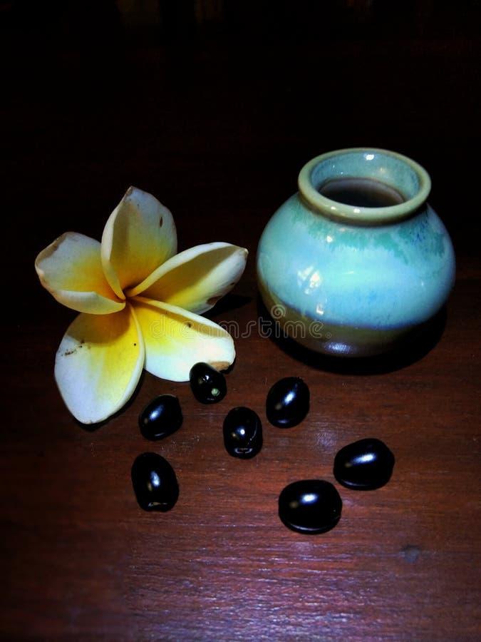 Peque?o tarro con las flores y los granos del frangipani foto de archivo