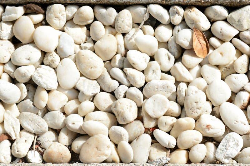 Peque?os guijarros blancos Fondo abstracto natural imagen de archivo libre de regalías