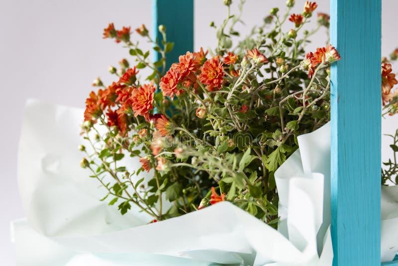 Pequenas flores laranja numa caixa azul imagem de stock royalty free