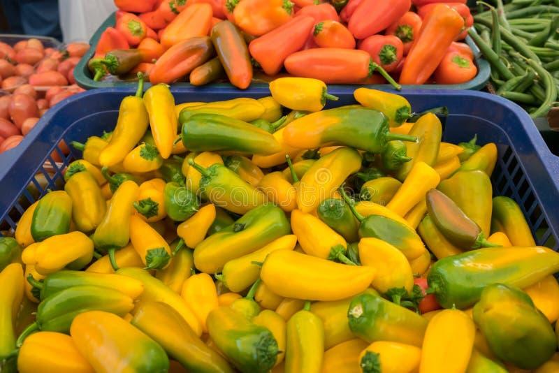 Pequeno ou para empequenecer pimentas amarelas, vermelhas, e verdes para a venda no mercado dos fazendeiros fotografia de stock