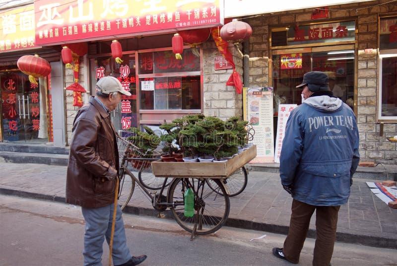 Pequim, China - 10 de janeiro de 2011: o homem vende árvores dos bonsais na rua do Pequim fotografia de stock royalty free
