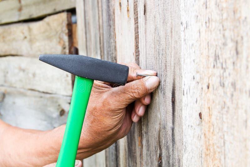 per martellare un chiodo con un martello Carpentiere più anziano del lavoratore fotografie stock libere da diritti