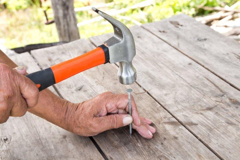 per martellare un chiodo con un martello Carpentiere più anziano del lavoratore immagine stock