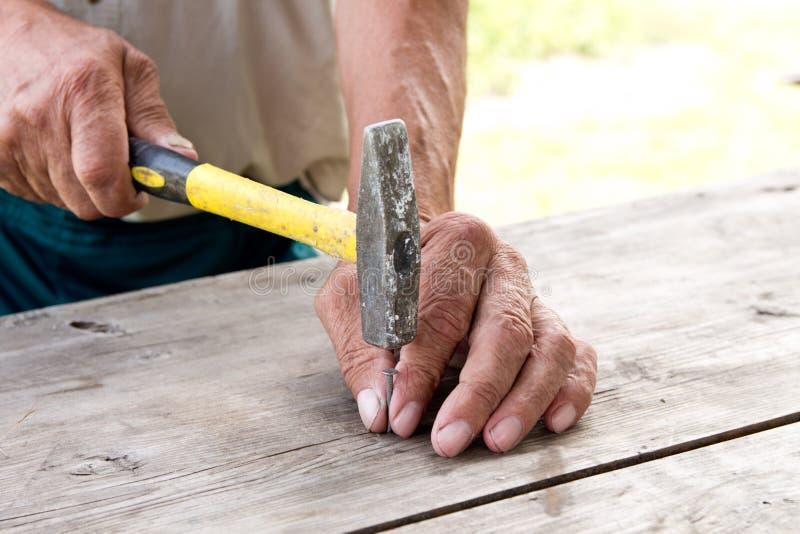 per martellare un chiodo con un martello Carpentiere più anziano del lavoratore fotografia stock libera da diritti
