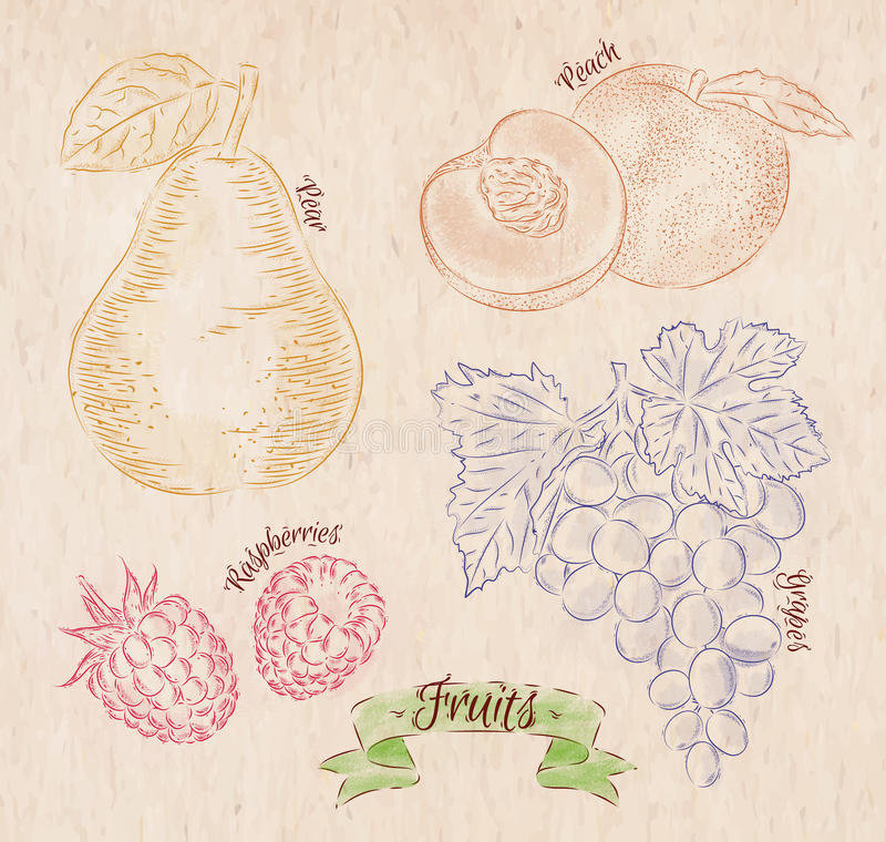 Pera de la fruta, melocotón, frambuesa, país de la uva libre illustration