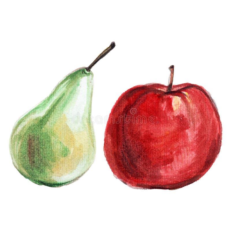 Pera dos frutos da aquarela, maçã vermelha ilustração royalty free