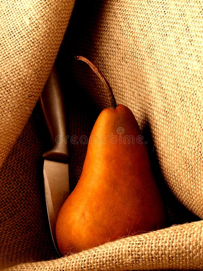 Pera e LAMA su tela da imballaggio fotografie stock libere da diritti