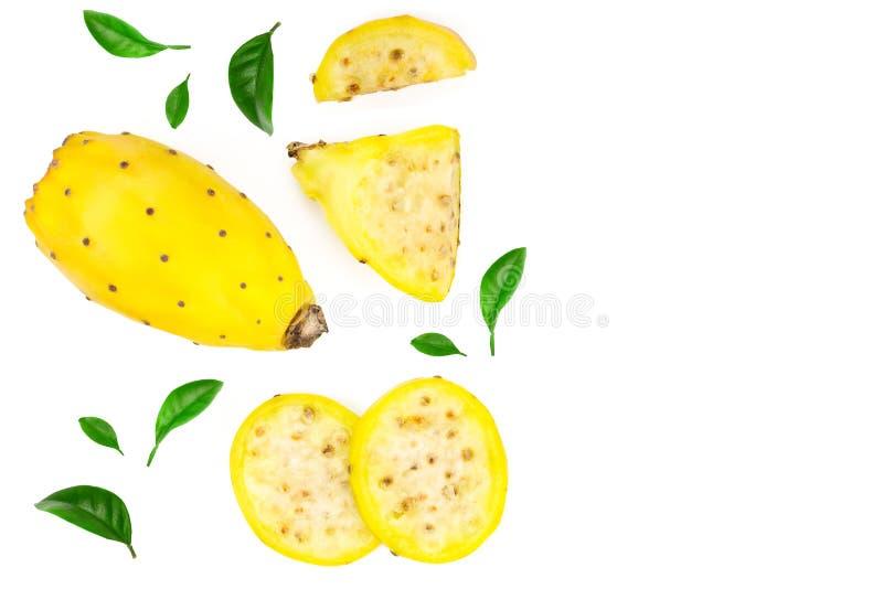 Pera espinhosa ou opuntia amarelo isolada em um fundo branco com espaço da cópia para seu texto Vista superior Configuração lisa fotos de stock royalty free