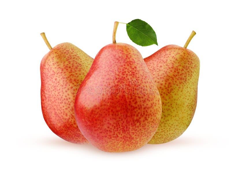 Pera isolada no fundo branco Fruta inteira imagem de stock royalty free